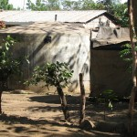 A rainwater tank next to a latrine