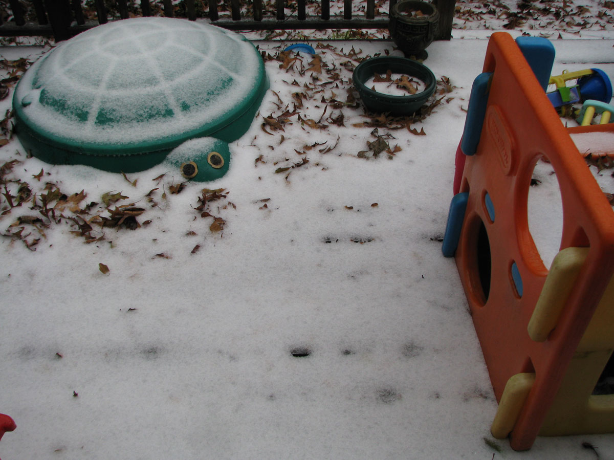 Sleet/snow on the deck - Monday afternoon after light freezing drizzle all day
