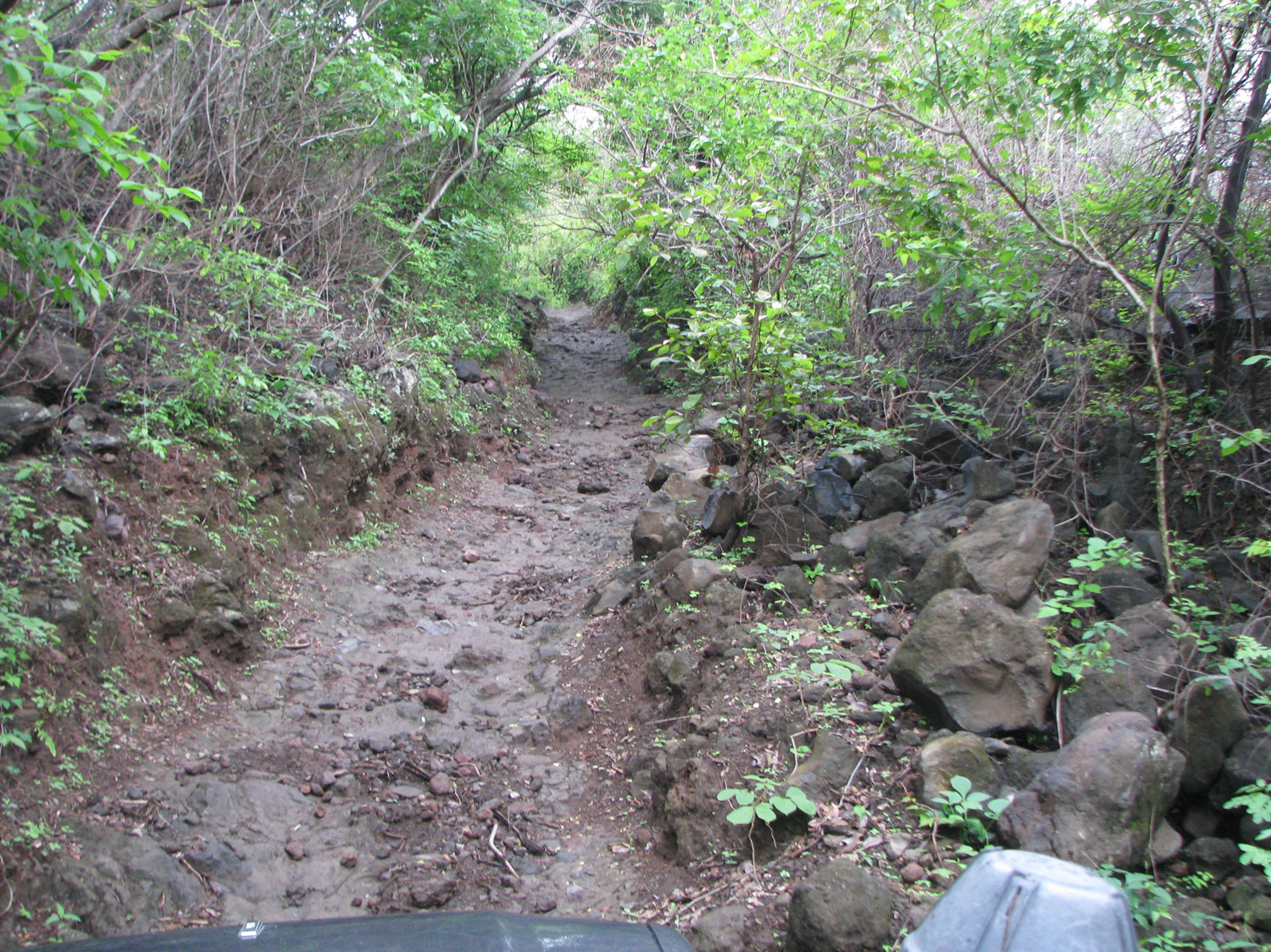 Steep, rocky, muddy - no problem for the Toyota Landcruiser!
