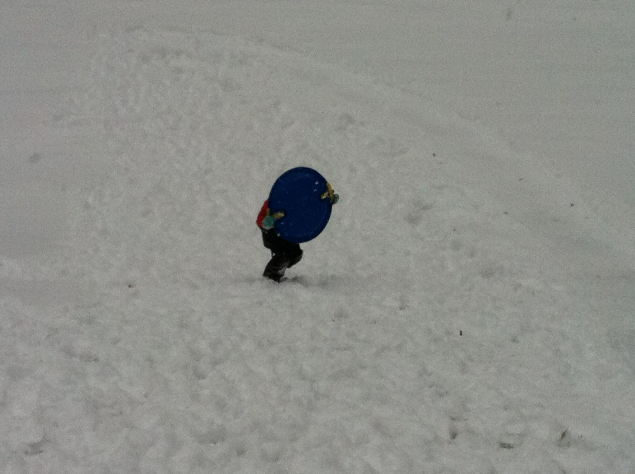 Josiah trying to carry his sled back up the hill